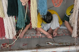 Afghan weavers making a rug with vegetable dyed wool.
