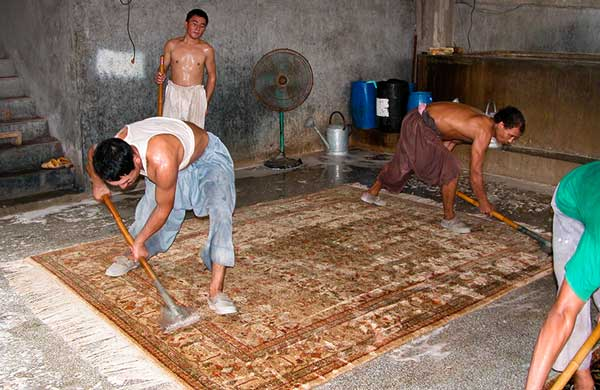 Care and Maintenance of your Oriental Rug